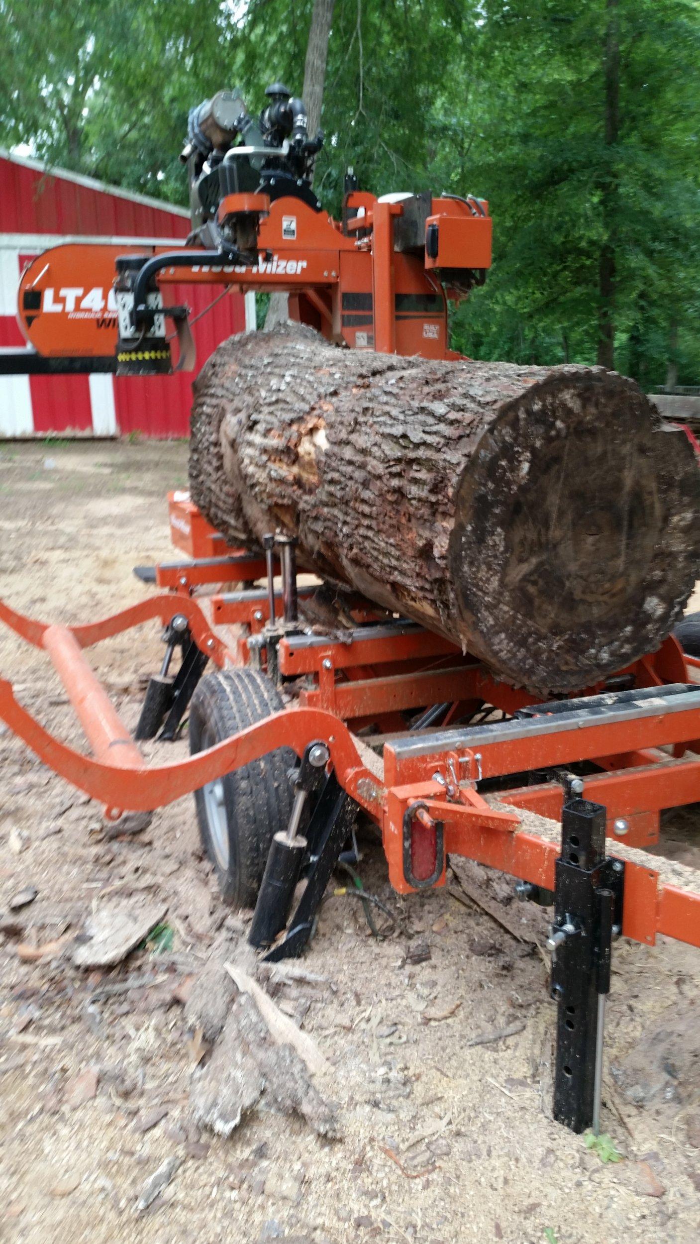 7 Foot Long Huge RED Oak.jpg