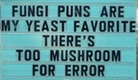 fungi.jpeg