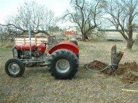 MF135 stump2.JPG