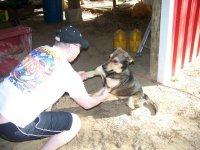 4-13-08 Luke and Booger wrestling.jpg