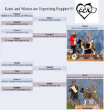 Kami and Matsu Anouncement.png
