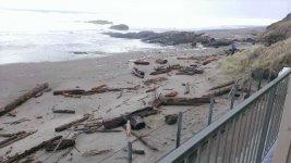Oregon coast logs washed up against hotel (2).jpg