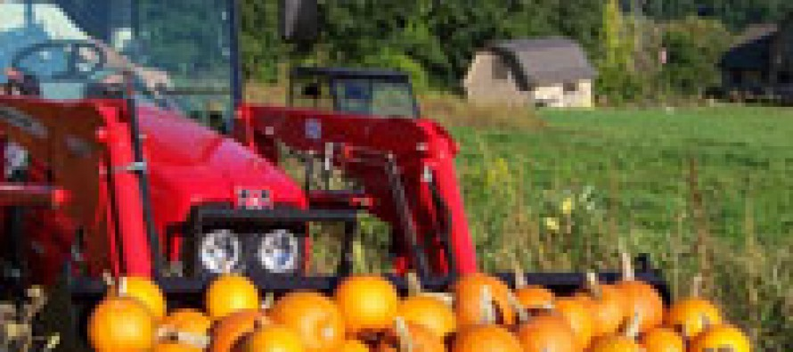 Fall Tractor Fun With Pumpkin Patches