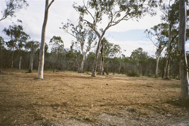 Land Clearing With Your Tractor - TractorByNet